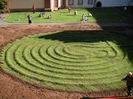 the labyrinth is green